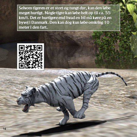 Tiger-QR-bog-2